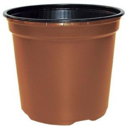 Pots de culture Thermoformés, 13 centimètres de diamètre - 0,90 Litre : 100 pièces