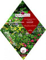 Mélange de Fleurs MASSIF Multicolore :  1.8 m²