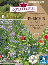 Mélanges de Fleurs pour ENRICHIR LE SOL Engrais Vert Fleuri : pour 100 m²
