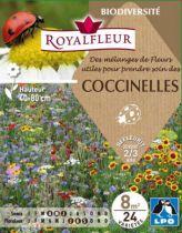 Mélanges de Fleurs pour COCCINELLES : pour 8 m²