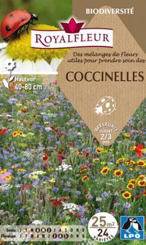 Mélanges de Fleurs pour COCCINELLES : pour 25 m²