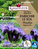 Des Fleurs utiles pour ENRICHIR LE SOL Phacélie : pour 8 m²
