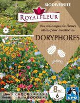 Mélanges de Fleurs pour limiter kes DORYPHORES : pour 8 m²