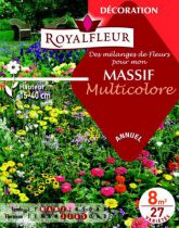 Mélanges de Fleurs MASSIF Multicolore : pour 8 m²