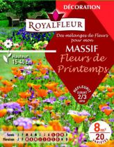 Mélanges MASSIF Fleurs de Printemps : pour 8 m²