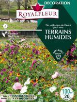Mélanges de Fleurs Spécial JACHÈRE TERRAINS HUMIDES : 100 m²