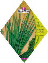 Ciboulette Fines Herbes
