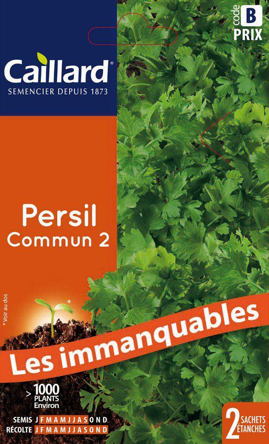 PERSIL - COMMUN 2