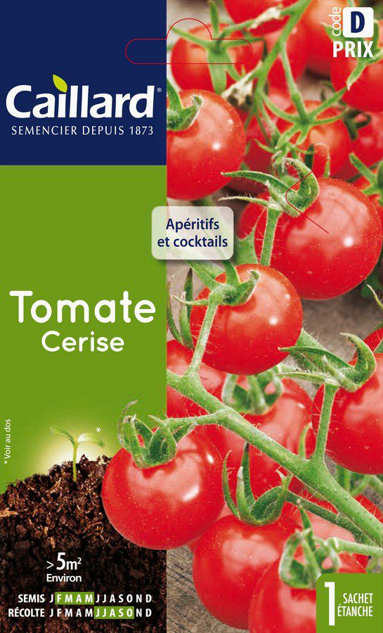 TOMATE - CERISE