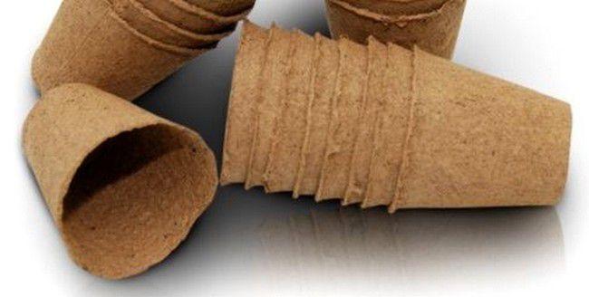 Godets de tourbe Jiffy : Diamètre 6 cm - 10 Pièces