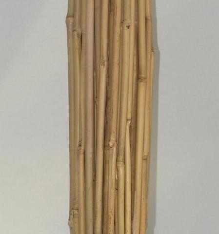 Tuteur Bambou : 10 pièces - Taille 106 cm - Diamètre 10/12 mm